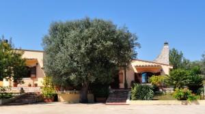villa-antonietta-masseria-luxury-property-puglia-ostuni19-300x167